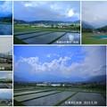 Photos: 白馬村と水田