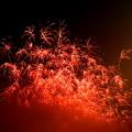 Photos: 夜空を焦がす花