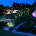 玉泉院丸庭園(金沢城公園) 秋のライトアップ(4)