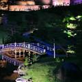 玉泉院丸庭園 秋のライトアップ(5)