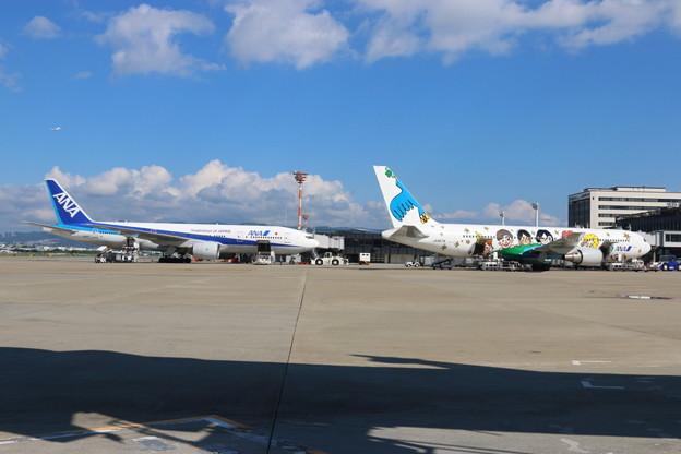 伊丹空港到着(5)