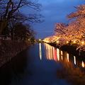 Photos: 桜`12予告編-1