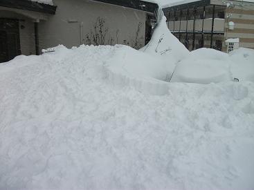 120127雪捨て場