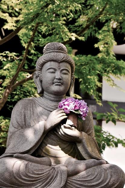 長谷寺のお地蔵さんにも紫陽花を。。6月20日
