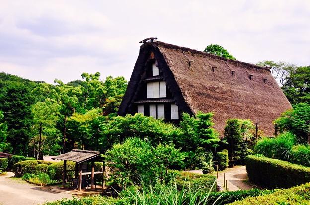 合掌造りの日本民家。。田舎の風景。。川崎市日本民家園6月28日