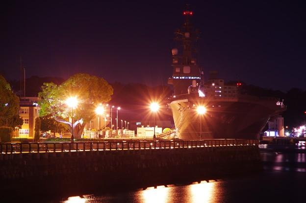 夜のヴェルニー公園はロマンチックな場へ・・20141223