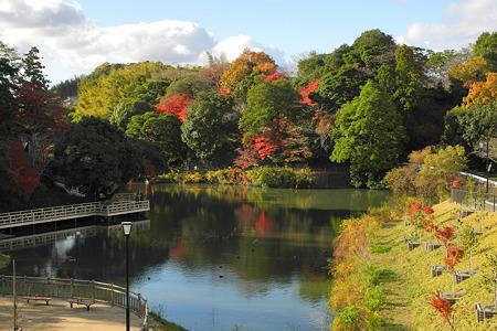 亀山公園の紅葉・5