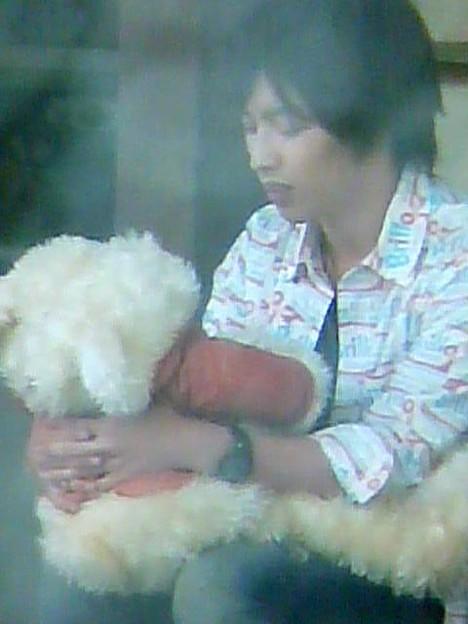 クマちゃん抱っこなう(*^艸^)