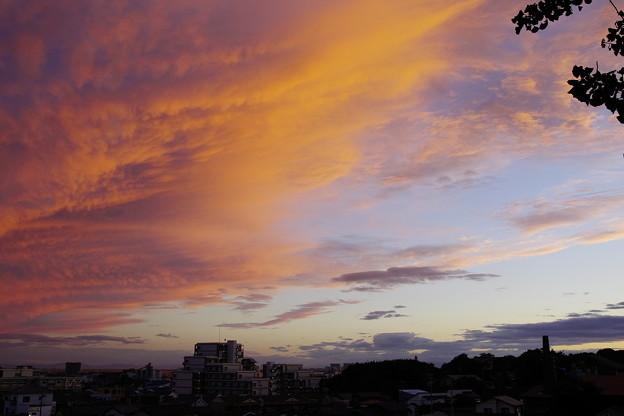 Photos: 雲が真っ赤!