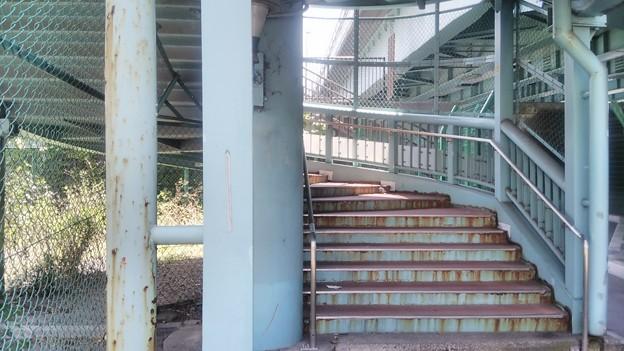 【看板撮りに秋葉原へ9】千住大橋