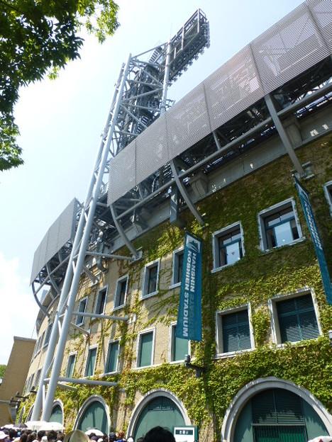 Photos: 蔦が伸びてきた甲子園