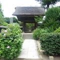 Photos: 極楽寺 茅葺の山門