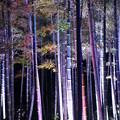 ライトアップされて幻想的な空間@長谷寺