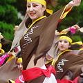 Photos: サクヨサ 7