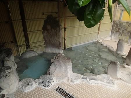 27 6 熊本 平山温泉 寿楽園 8