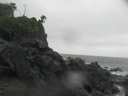 雨の伊豆海洋公園