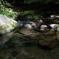 滑沢川の透き通る水
