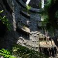 Photos: 温室の壁