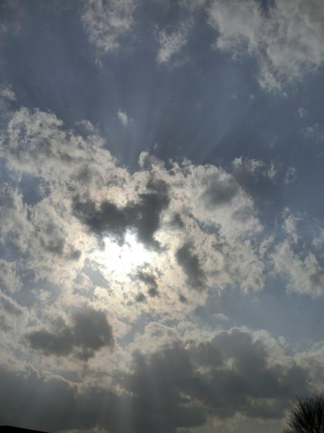 空・桜上水・20120401-02