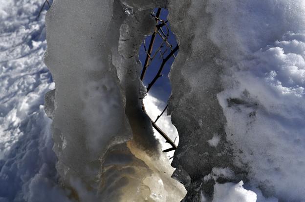 しぶき氷の中をのぞく