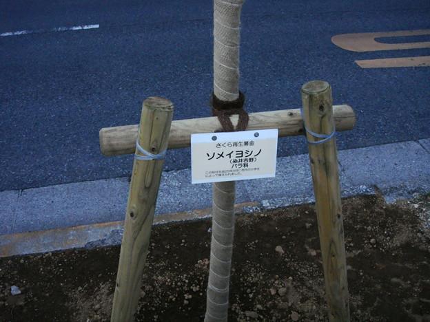 写真: 日本の道百選を建設省が選定 1987年8月3日